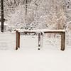 2010-02-29-203 Snow at Home Yard Bixby