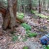 02-05 Acadia Nat'l Park, Maine