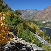 above Lundy Lake