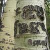 Basque aspen carvings