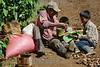 Nicaragua: Hombre y sus 3 hijos tomandose tiempo para almorzar luego de una intensa maÒana de corte de cafÈ en Pantasma , Jinotega . Municipio jinotegano ubicado a 212 kilÛmetros de Managua y 47 de la cabecera departamental.