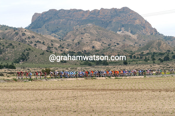 The peloton is flying across Murcia with a tailwind now...