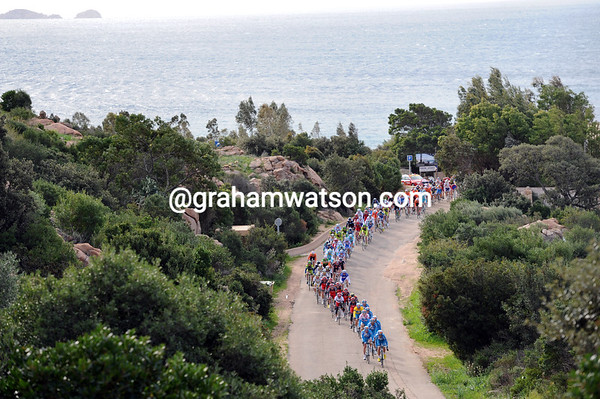 The peloton cannot slow down to enjoy the pleasing backdrop...