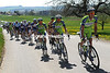 Liquigas start a chase with 65-kilometres to go...