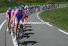 Lampre is doing all the work - Damiano Cunego and Alessandro Petacchi have missed out on the split...