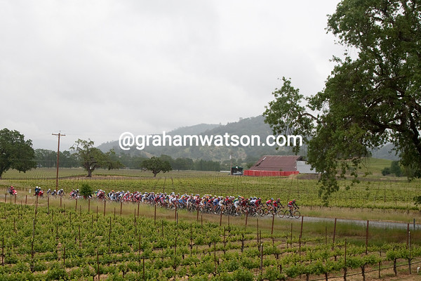 Seems the instructions were to move all hands to the front. Here The Shack leads the peloton through Napa vinyards.