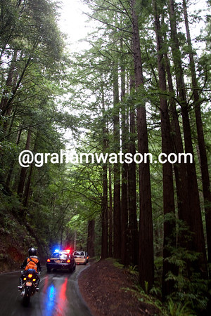 The weather has gone cold and wet on the Tunitus Creek climb through the redwoods...
