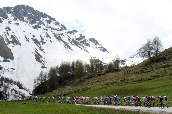 The peloton is heading even higher now - it will go up to 2,315-metres on this first climb of the day...