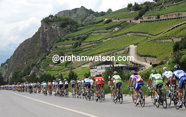 There's a lot of Swiss wines stacked up above the peloton as it speeds down the valley of the Rhone...