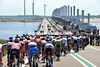 The peloton is still compact on the massive bridge across the North Sea at Port Zelande...