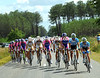 Milram, Lampre and Columbia are chasing the escape through the Landes forests, what's left of them...