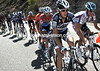 Andy Schleck is sheltering brother Frank halfway back down the group - neither Schleck is looking too good today..!