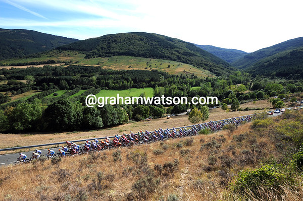 It's green and grassy scenery for the peloton today...