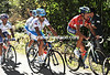 Nibali looks tense with rivals Mosquera and Rodriguez on his tail...
