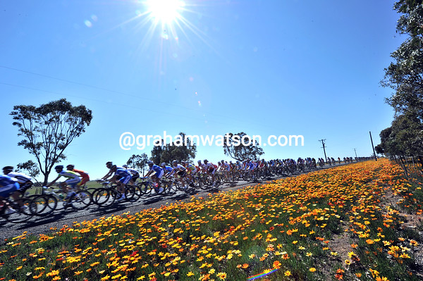 A perect Victorian day for the World Championships as it nears Geelong...