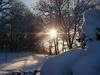 cold feb 2011 011
