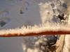 cold feb 2011 002