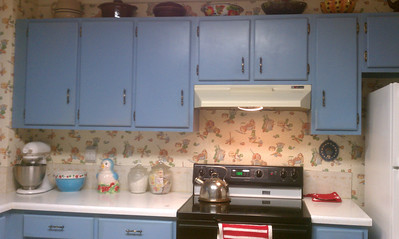 got my vintage kitchen items up over the cabinets