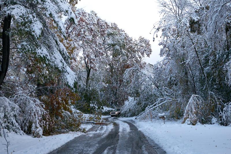 Joseph Road, Boxboro, MA