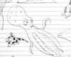 P1020046_jpg