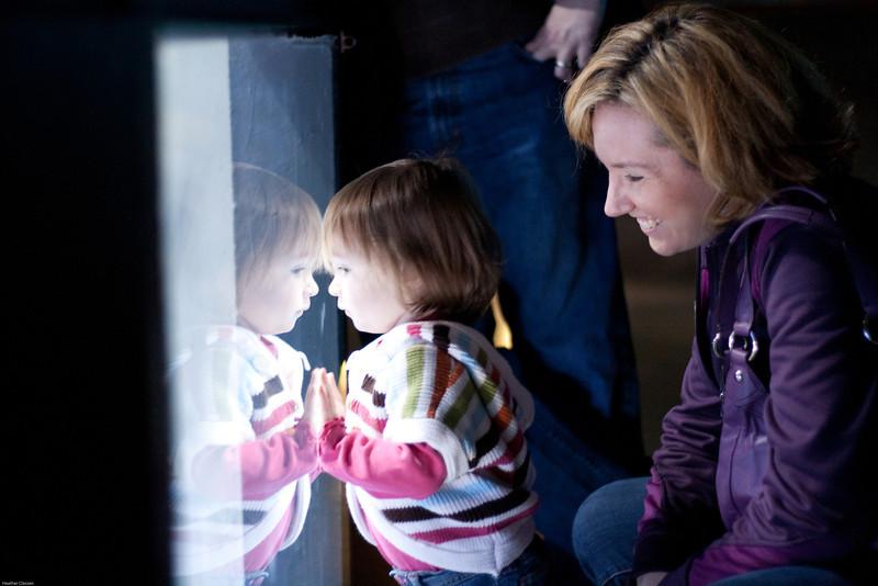 2011_Nov_AandEAquarium-9