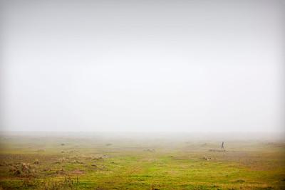 Lincoln Fog #1
