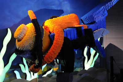 2011_Sydney_Aquarium_0013