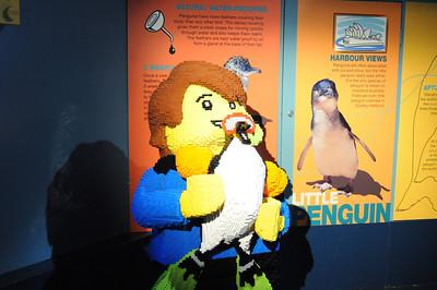 2011_Sydney_Aquarium_0008