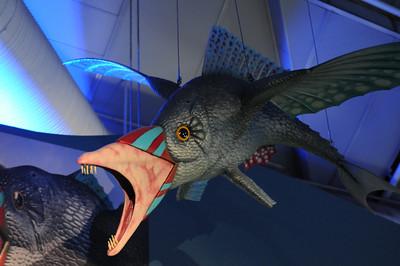 2011_Sydney_Aquarium_0002