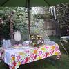Garden Party, 2011