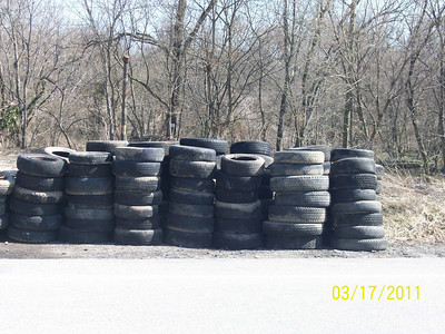 3.17.11 Watershed Cleanup off Hammonds Ferry Rd.