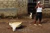Nicaragua - Puerto Cabezas : Miskitos en el Puerto de Bilwi, Puerto Cabezas se dedican a la Caza y Pesca de las Tortugas verdes, las cuales se encuentran en estado de extincion, tienden redes en las corrientes marinas de Sandy Bay y Cayos Miskitos en el Atlantico de Nicaragua . Estas son comercializadas por el costo de U$ 25 a U$ 50. Esta comunidad viene desde Honduras hasta Nicaragua hasta llegar a las riveras de Costa Rica. / Turtle meat sold in puerto cabezas. Green sea turtle. C. mydas is listed as endangered by the IUCN and CITES and is protected from exploitation in most countries. It is illegal to collect, harm or kill them. / Nikaragua: Meeresschildkröte. Die Suppenschildkröte (Chelonia mydas) ist ein Vertreter der Meeresschildkröten. Seit 1988 steht sie durch das Washingtoner Artenschutz-Übereinkommen unter internationalem Schutz. Rote Liste gefährdeter Arten. Artenschutz. © Inti ocon/LATINPHOTO.org