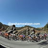 The peloton races up Kangaroo Creek at an un-precedented pace - this is looking like a great stage!