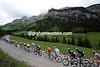 The Dauphine peloton climbs the picturesque Col de Aravis, two minutes down on the escape...