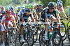 Michael Barry is protecting Davide Appollonio in the last 10-kilometres...