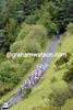 Box Hill greets a compact peloton - but where are all the spectators..?!