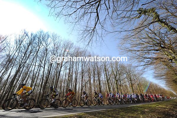 The peloton races through stunning Yvelines forests with race-leader Thomas de Gendt at the front...