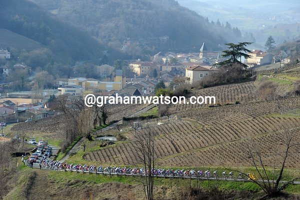 Paris-Nice is ending the day as it started - by climbing the narrow climbs amongst the Beaujolais vignes...