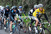 Tony Martin looks utterly composed in the leading group, he is one day away from winning Paris-Nice..!
