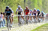 Juan Antonio Flecha leads the favourites' chase through the Arenberg forest...