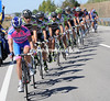 Lampre have taken over the chasing from Geox - Alessandro Petacchi in the sprint is their reason for working now...