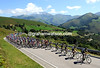 The peloton is being led through stunning Cantabria by the Geox team...