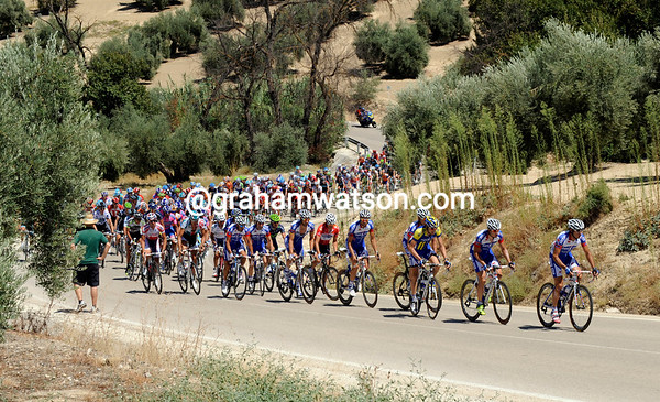 The peloton toils under the scorching hot sun, somewhere in Andalucia...