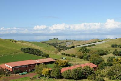2011_New_Zealand_Waiheki_Island0014