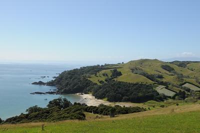 2011_New_Zealand_Waiheki_Island0007
