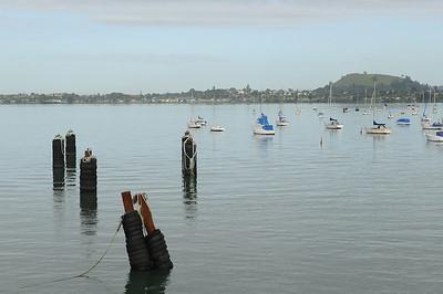 2011_Waiheki_Island_New Zealand