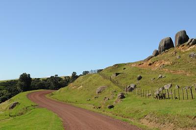 2011_New_Zealand_Waiheki_Island0012