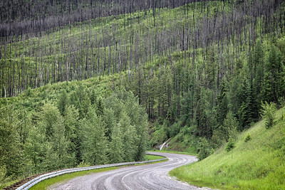 Gravel road back from Polebridge, MT