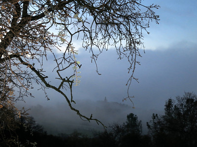 2012-12-17 Foggy view from Fawn Hill