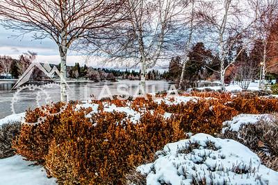 Fading winter light  December 19, 2012